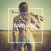Barb Wire by The Human Animal; Part of The USA Project