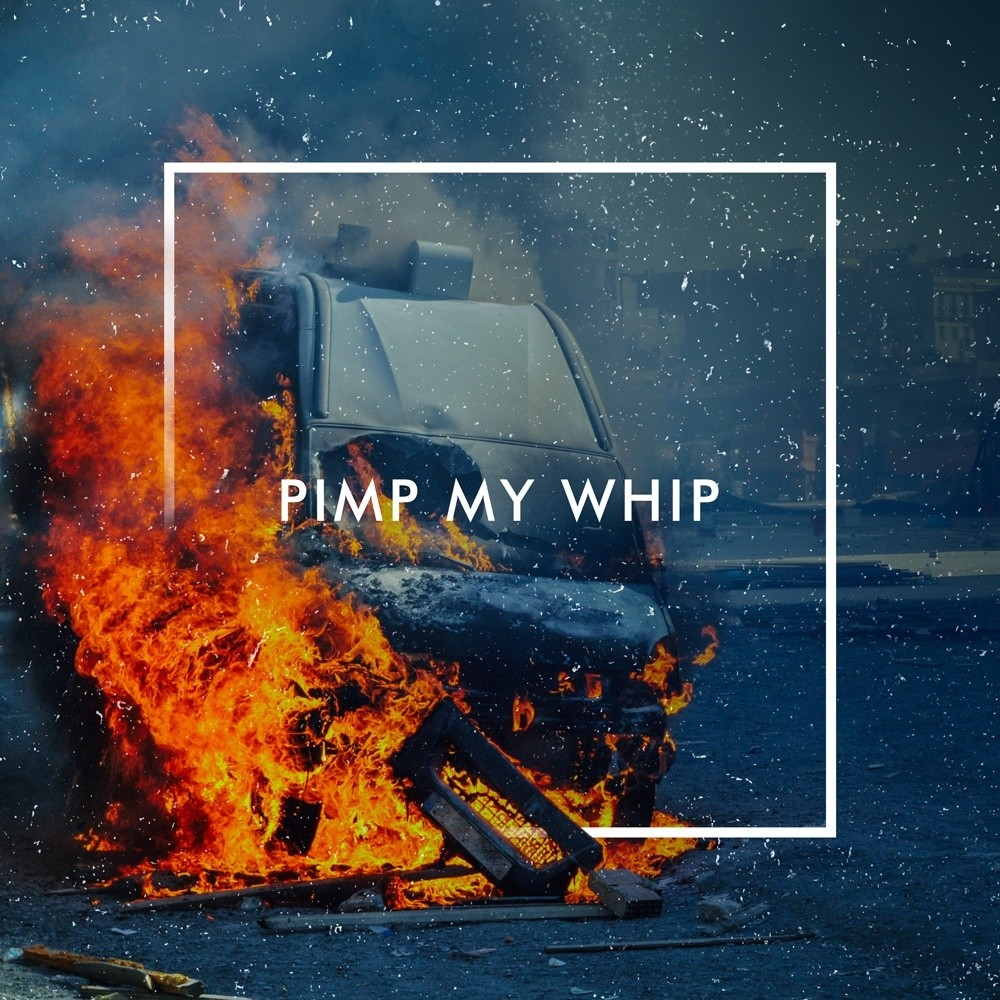 Pimp My Whip by The Human Animal; Part of The USA Project