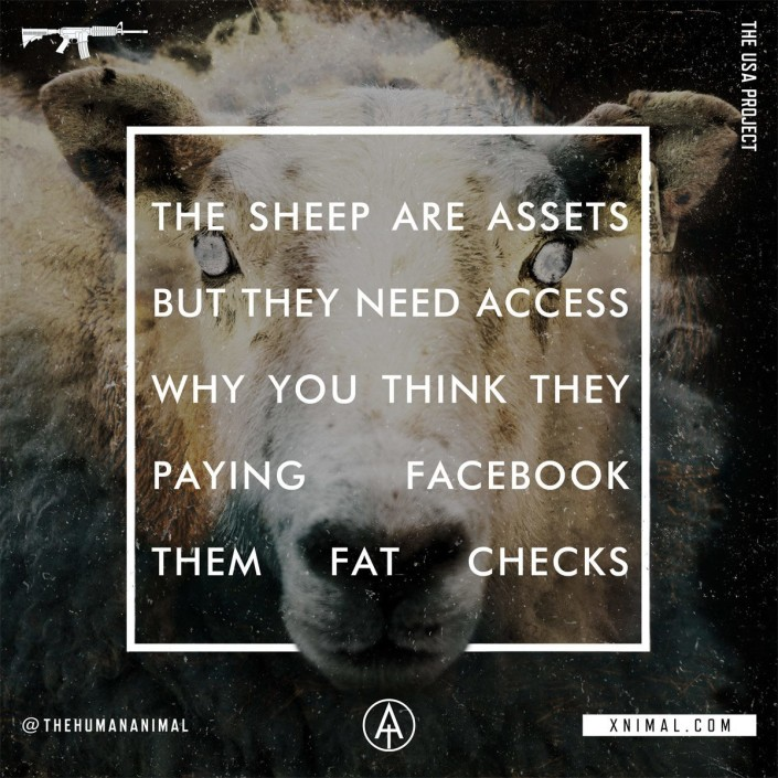 Lyric Typography // The Human Animal - Sheep